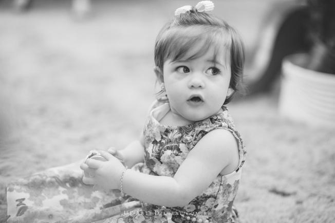 aniversario-infantil-maringa-fotografo-maringa-up-arte-digital-upartedigital-luiza-006-1148